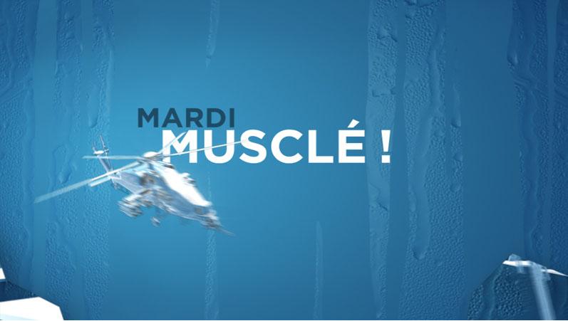 Apercu : Discovery Channel:<br /> Musclé