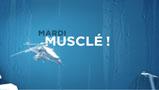 Vignette : Discovery Channel:<br /> Musclé